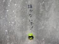 はじめまして(*・ω・)*_ _))ペコリン